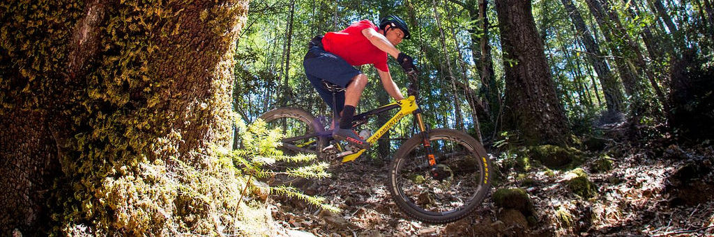 5 Amazing Mountain Bike Trails In Eastern Europe